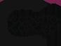 Conetto Concept